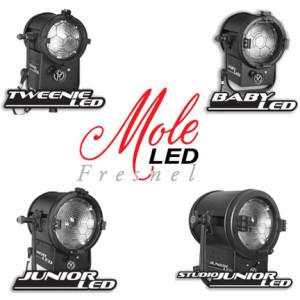 Mole-LED